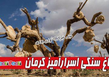 باغ سنگی درویش خان سیرجان کجاست؟+ فیلم باغ سنگی پرویز کیمیاوی