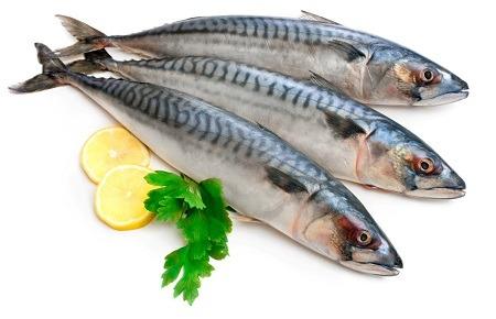 تشخیص ماهی تازه
