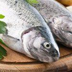 مشخصات ماهی تازه