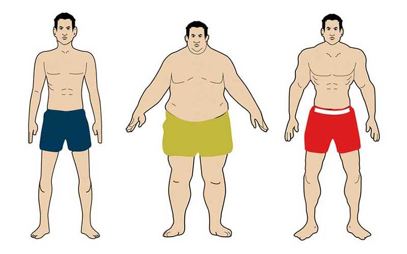 شخصیت شناسی ویلیام شلدون براساس هیکل و فیزیک بدنی
