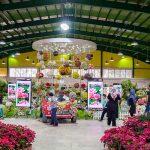 نمایشگاه گل و گیاه کرج سال 98