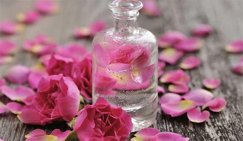 گلاب منافذ باز پوست را می بندد