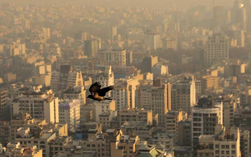 مدارس تهران یکشنبه ۱۰ آذر تعطیل شد