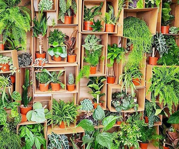 استند خانگی برای گل و گیاه