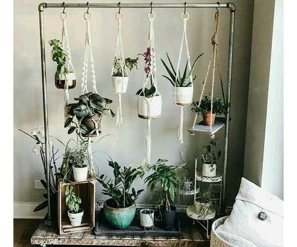 تزیین گل و گیاه با میله فلزی
