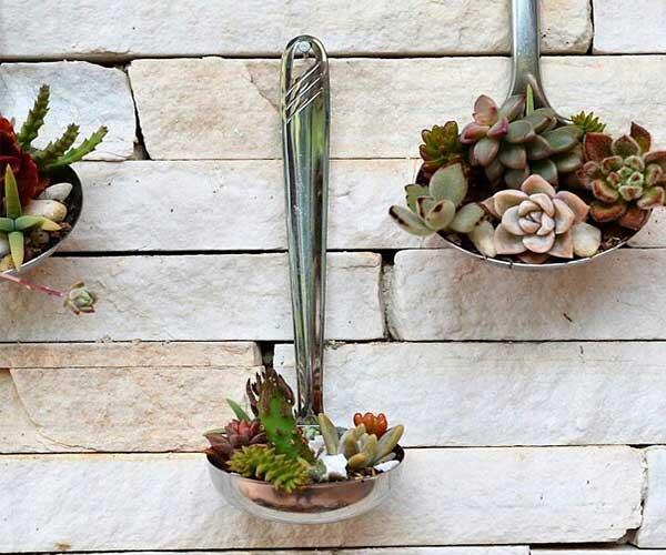 ایده تزیین گل و گیاه در آشپزخانه