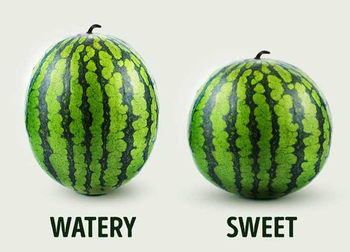 هندوانه نر بخریم یا ماده