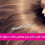 چطور موهایی صاف و درخشان داشته باشیم