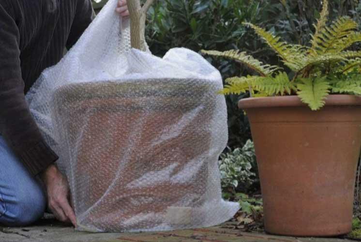 استفاده از پوشش پلاستیکی بر روی گلدانها