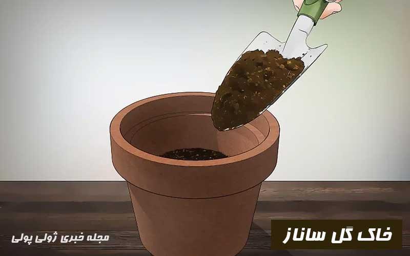 خاک مناسب گل ساناز