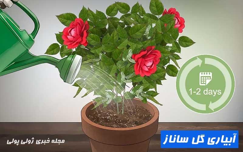 آبیاری گل ساناز