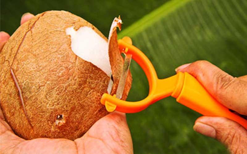 چطور پوست نازک نارگیل را بگیریم؟