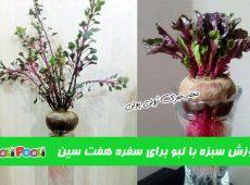 روش کاشت و پرورش سبزه با لبو+ آموزش سبزه لبو برای سفره هفت سین