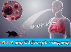 هانتا ویروس چیست؟ + علایم هانتا ویروس + درمان هانتا ویروس