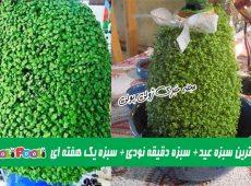 سریعترین سبزه عید + سبزه عید یک هفته ای + سبزه عید دقیقه نودی