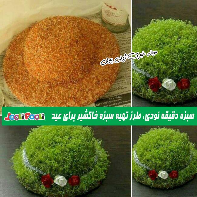 طرز تهیه سبزه خاکشیر برای عید