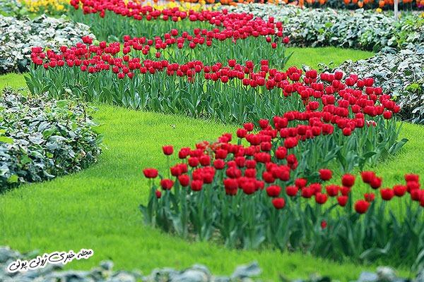 جشنواره لاله ها در پارک چمران کرج