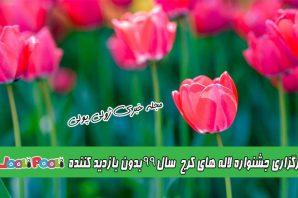 جشنواره لاله های کرج سال ۹۹+ برگزاری جشنواره لاله های کرج بدون بازدید کننده