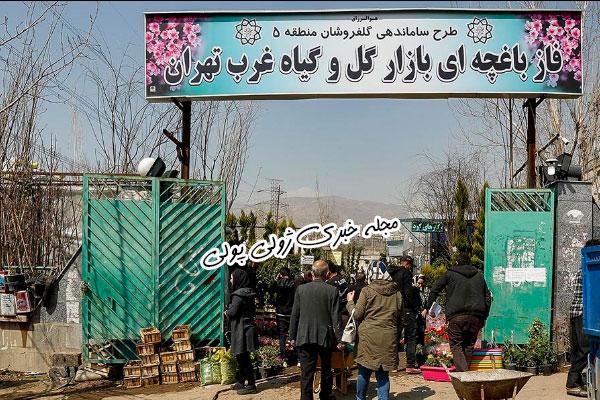 گلهای باغچه ای بازار گل غرب تهران