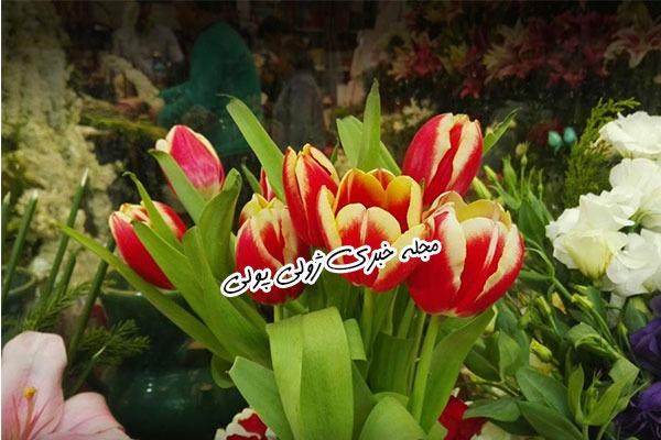 گلهای شاخه بریده در بازار گل غرب تهران