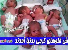 شش قلوهای کرجی به دنیا آمدند+ ویدئوی صحبتهای مادر و پدر ۶ قلوهای کرجی