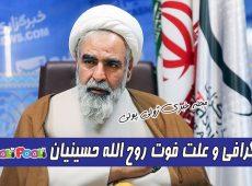 بیوگرافی روح الله حسینیان+ علت فوت حجت الاسلام روح الله حسینیان