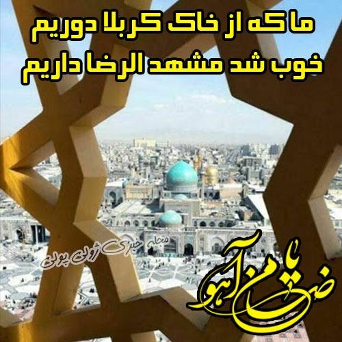 عکس یا ضامن آهو شهادت امام رضا