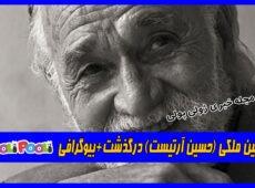 حسین ملکی (حسین آرتیست) درگذشت+بیوگرافی