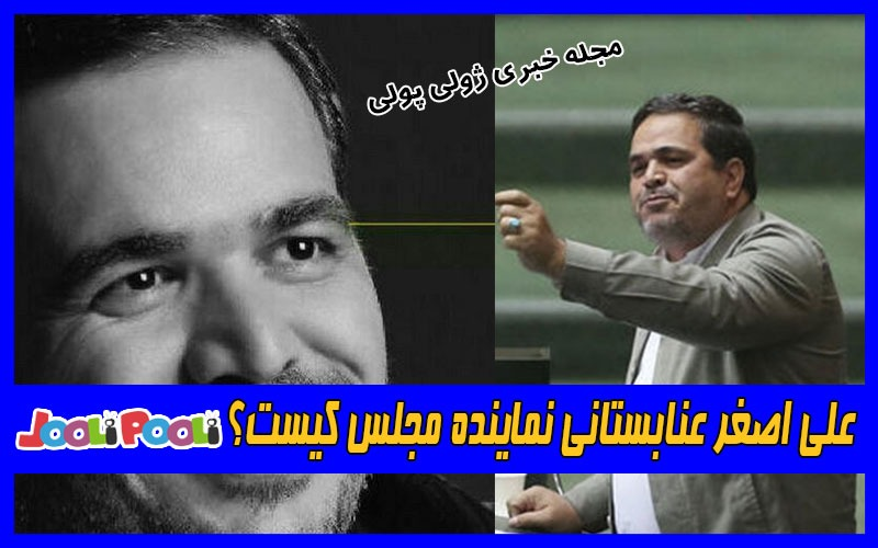 علی اصغر عنابستانی نماینده مجلس کیست؟+ عکس